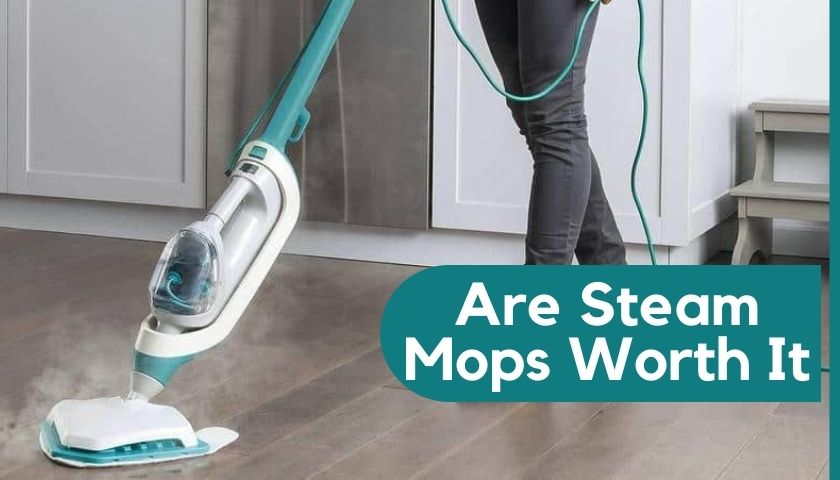 Are Steam Mops Worth It