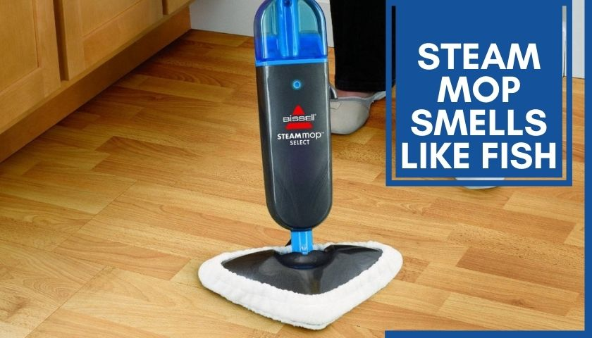 Steam Mop Smells Like Fish