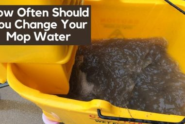 How Often Should You Change Your Mop Water | Easy Tips